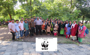World Wide Fund for Nature Activity